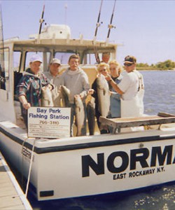 Norma fishing charters bay park fishing station for Oceanside fishing charters
